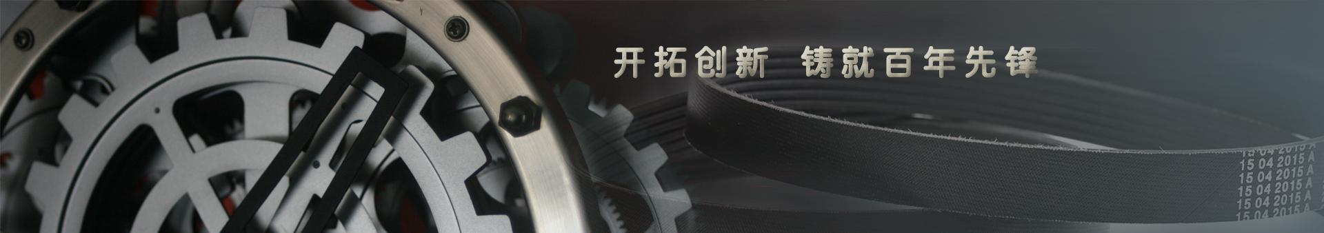 贵州大众橡胶